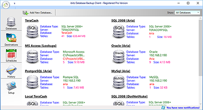 ibitz Database Backup Software database window screenshot